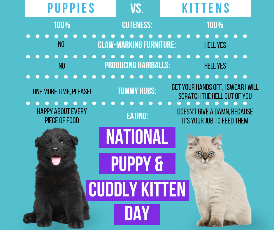 National Puppy and Cuddly Kitten Day